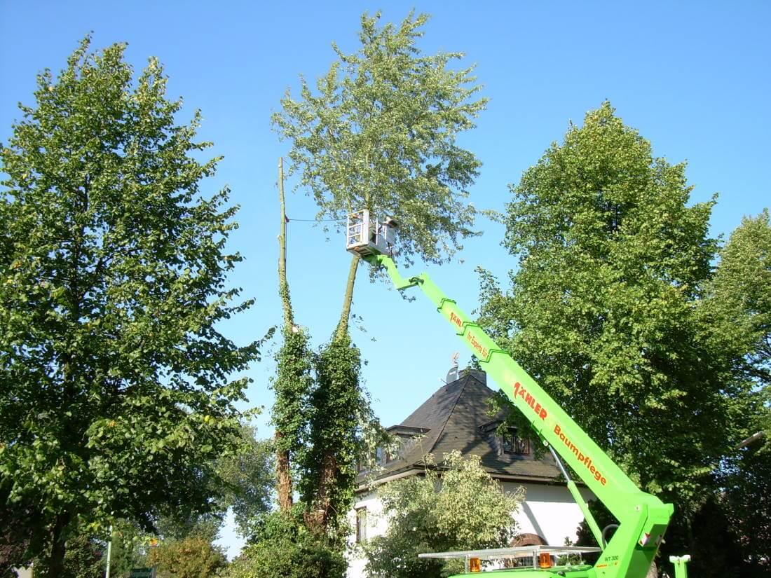 Baumfällarbeiten Hubarbeitsbühne