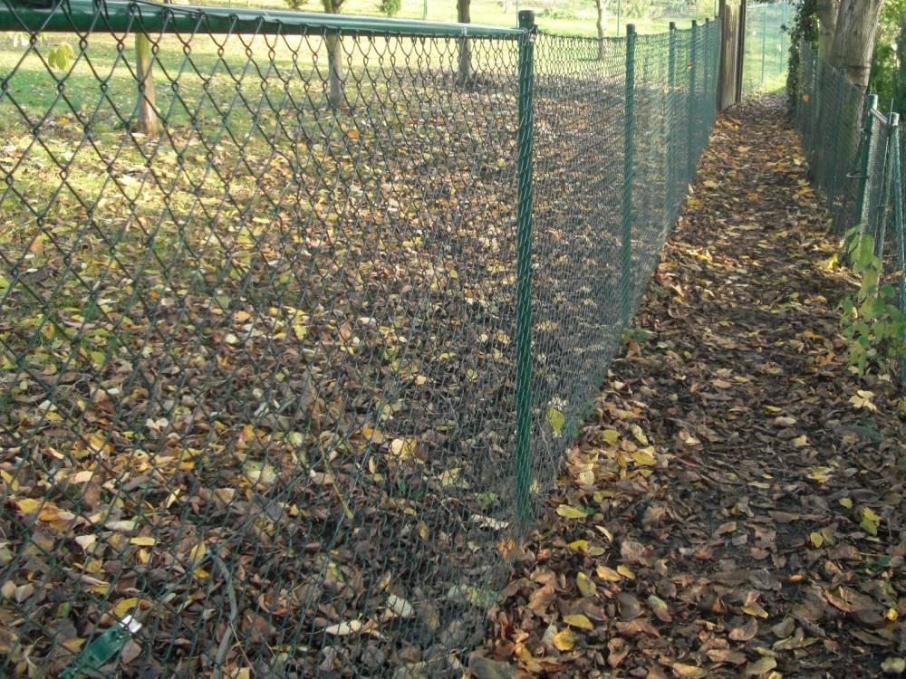 Ungewöhnlich Maschendrahtzaun Um Garten Fotos - Die Besten ...