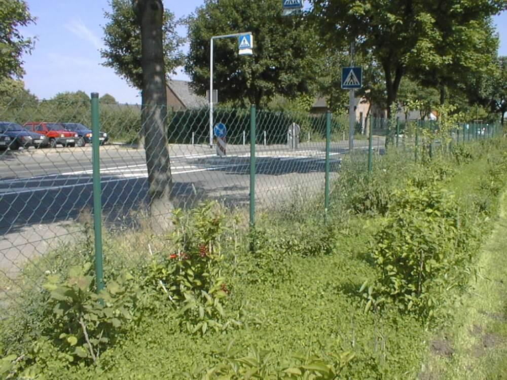 Maschendrahtzaun   Galabau Mähler   Traumgarten