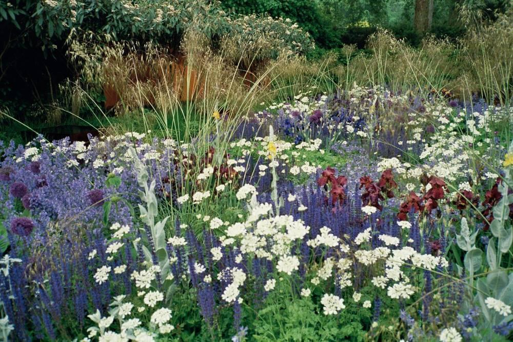 Pflanzarbeiten Garten