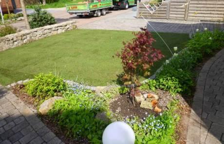 Der Rollrasen für den Garten in top Qualität