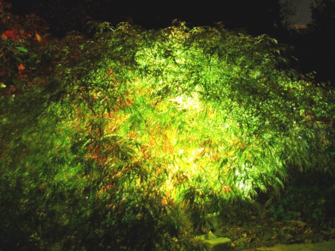 LED Strahler Garten