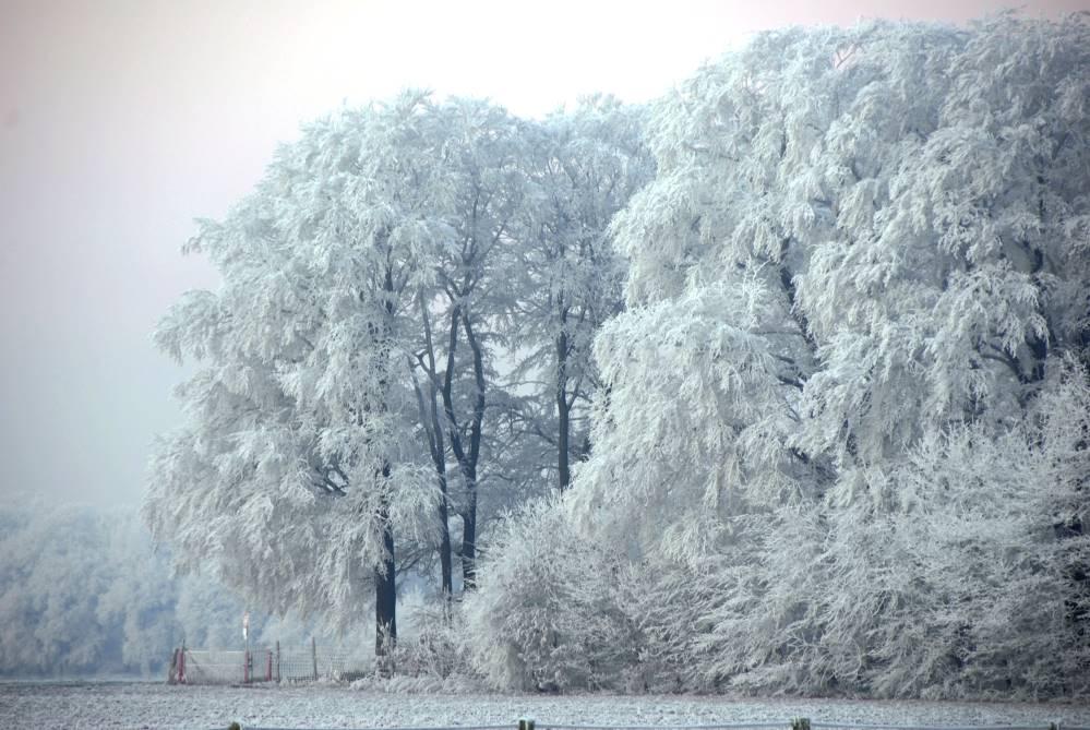 Winterdienst Kleve