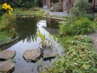 naturnaher Garten anlegen