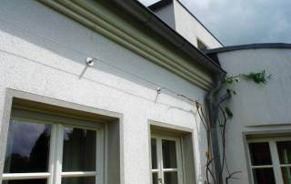 Fassadenbegrünung mit Blauregen