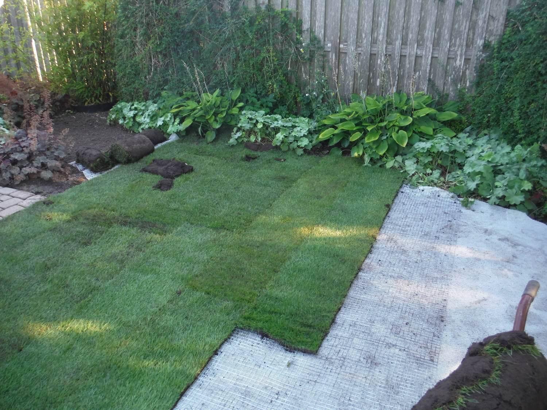 Maulwurfsperre Rasen Galabau Mähler Traumgarten