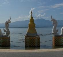 Sea Snake Dragon Guardians in the Kwan Phayao Lake