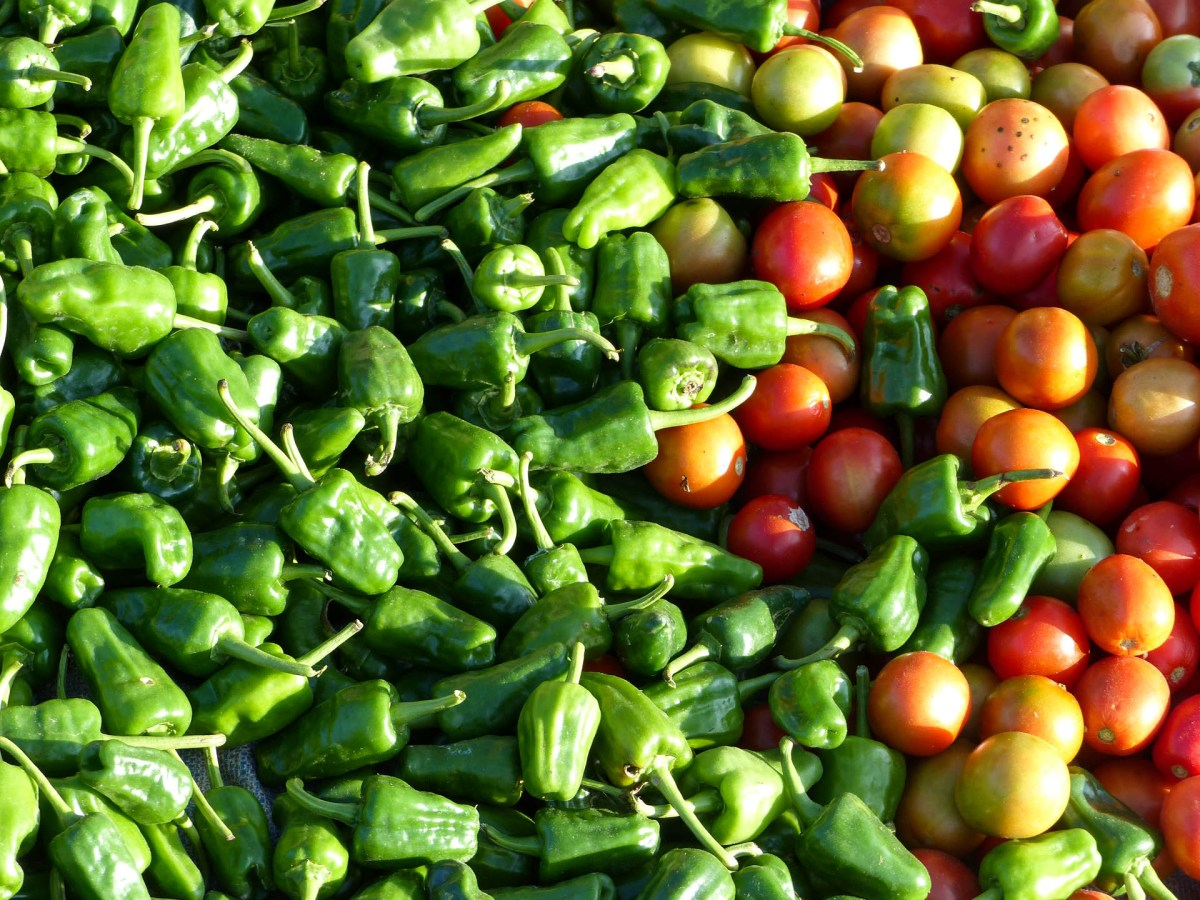 Tomatoes and chillis on Nanpan market in the south of Inle Lake