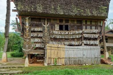 Tana Toraja - traditional house decoration with buffallo bones Christian Jansen & Maria Düerkop