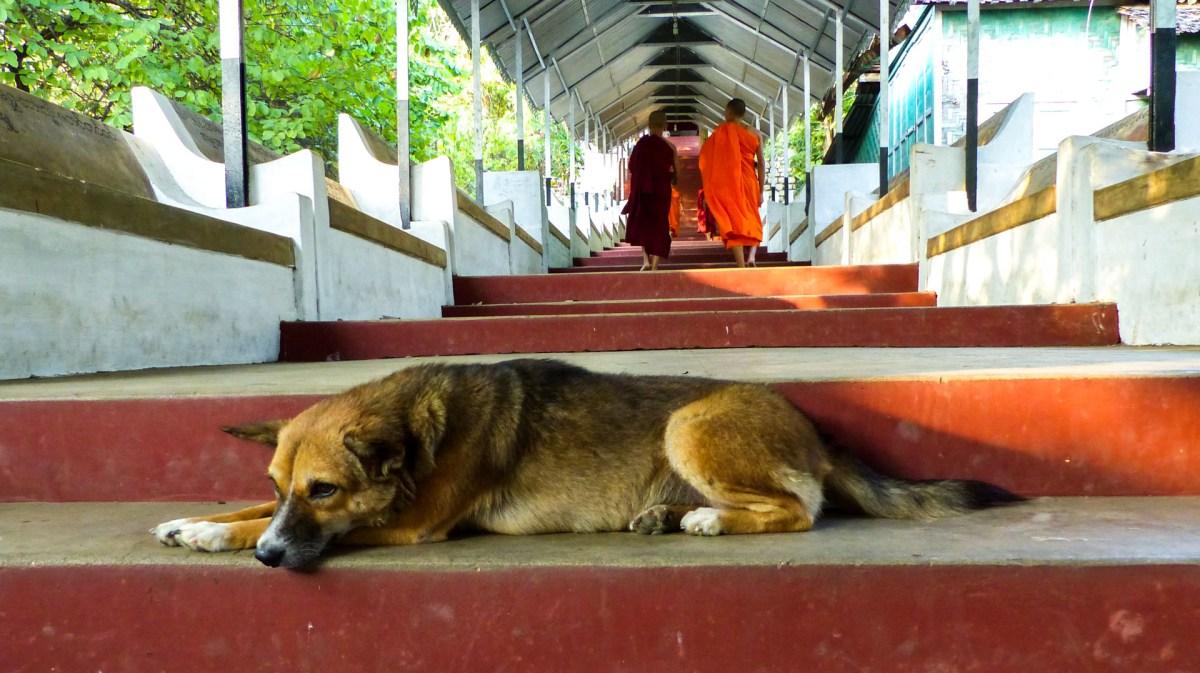 Mandalay hill - Tiring steps Christian Jansen & Maria Düerkop