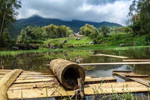 Tana Toraja - bamboo on lake Christian Jansen & Maria Düerkop