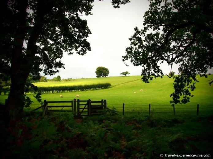 Fields on Hadrian's Wall Path