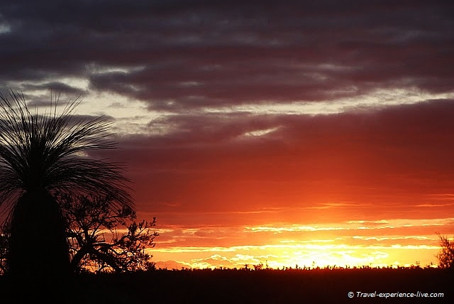 Gorgeous sunset in the outback of Western Australia.