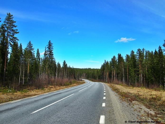 Road and forests in Sweden.