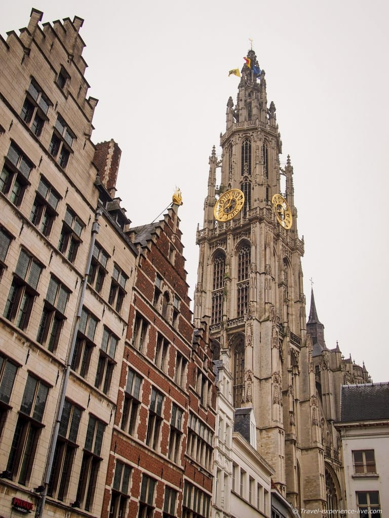 The cathedral and the lovely houses of historic Antwerp.