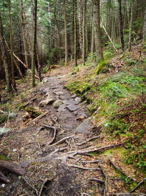 Gorge Brook Trail, Mount Moosilauke, New Hampshire.