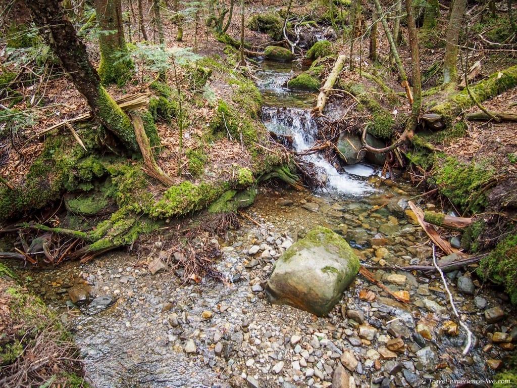 Stream on Mount Moosilauke.
