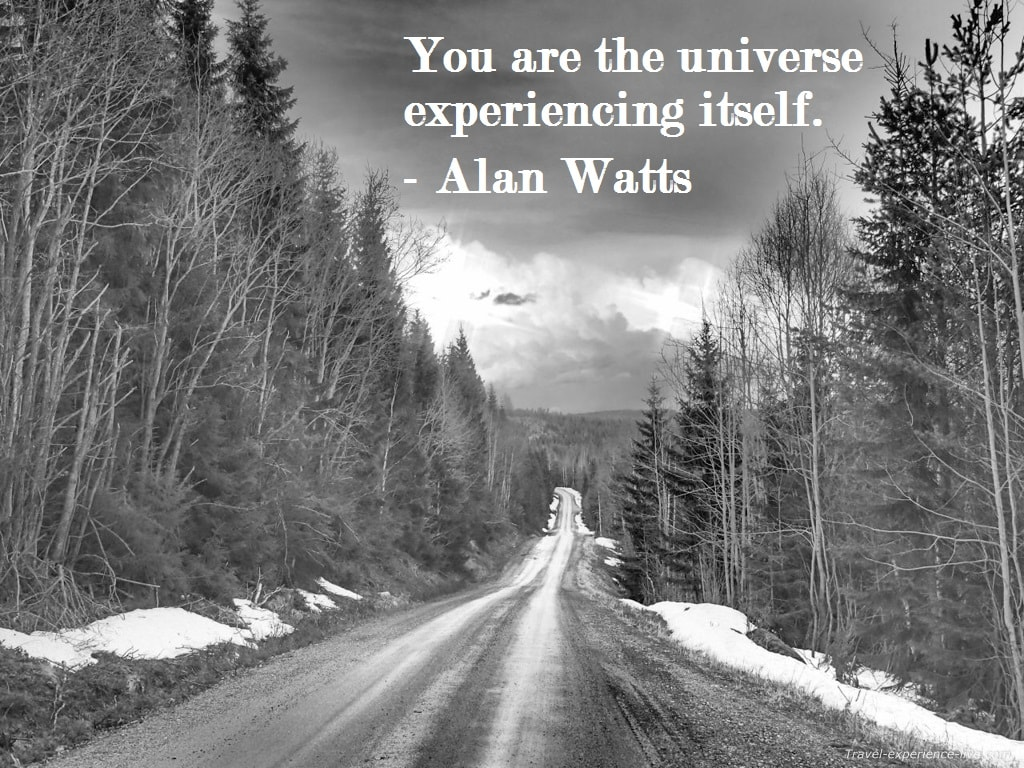 Life Quote by Alan Watts.