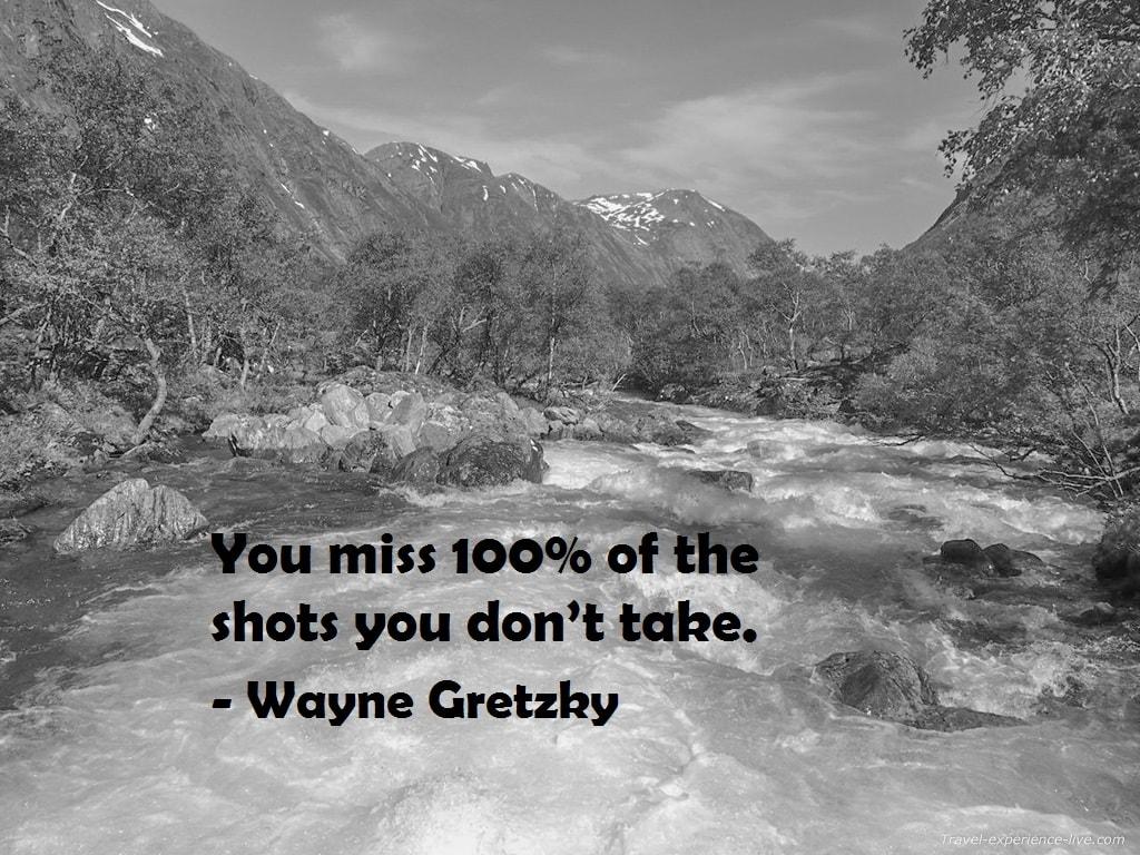 Wayna Gretzky quote.