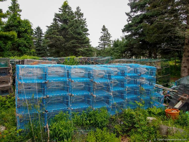 Lobster cages in the village.