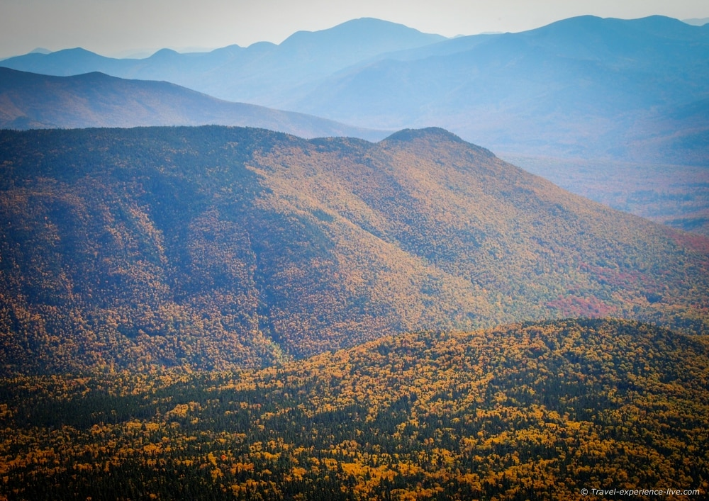 Fall foliage in the Pemigewasset Wilderness.