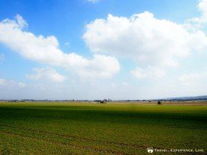Beautiful flat fields in southern Sweden