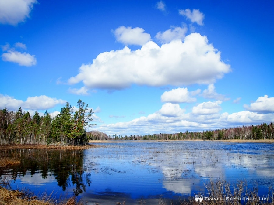A perfectly still lake, Sweden