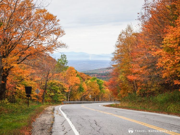 Autumn Green Mountains Vermont