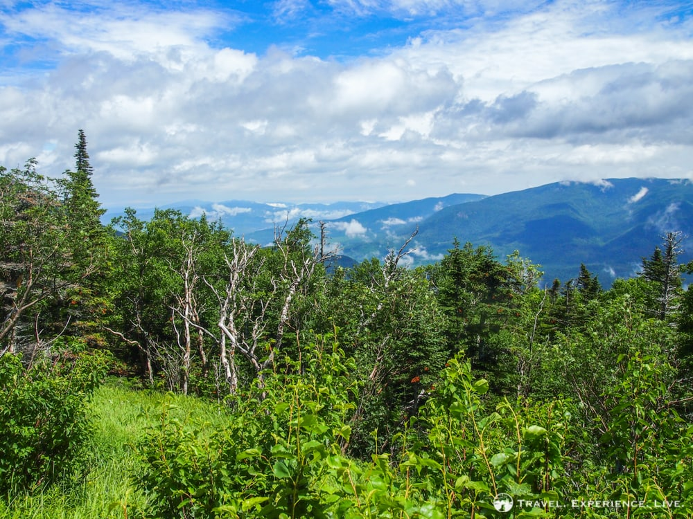 View from the Mount Washington Auto Road