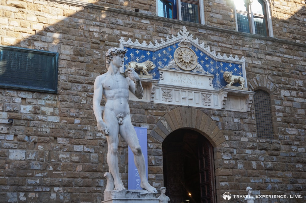 Copy of Michelangelo's David, Florence photos