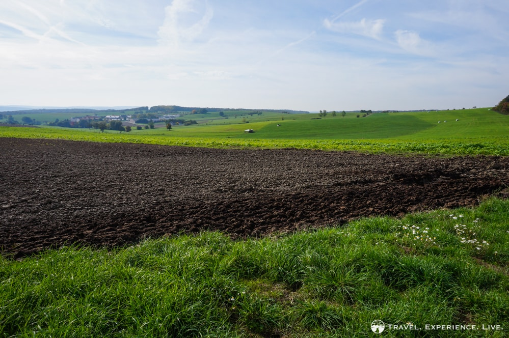 Farmlands in Luxembourg's Little Switzerland