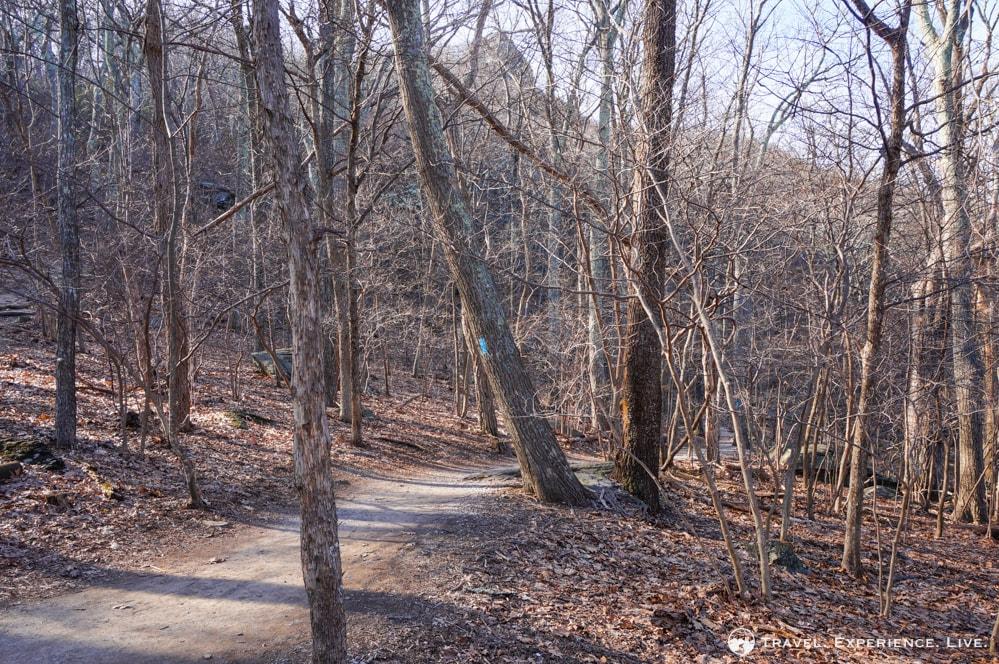 Humpback Rocks trail