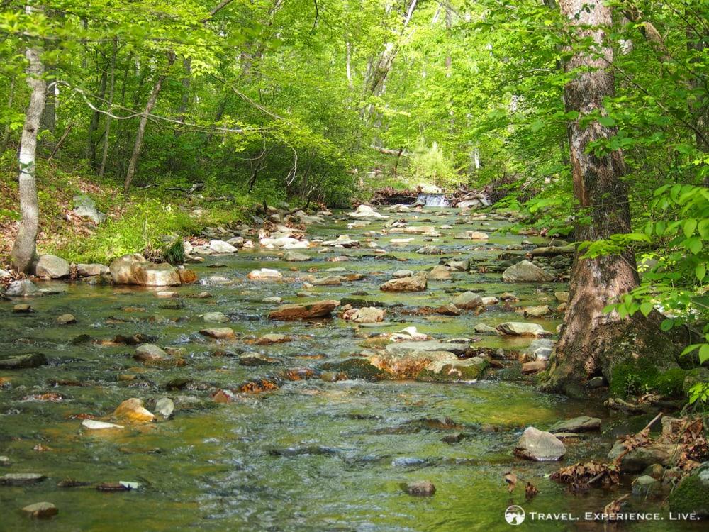 Paine Run, Shenandoah National Park