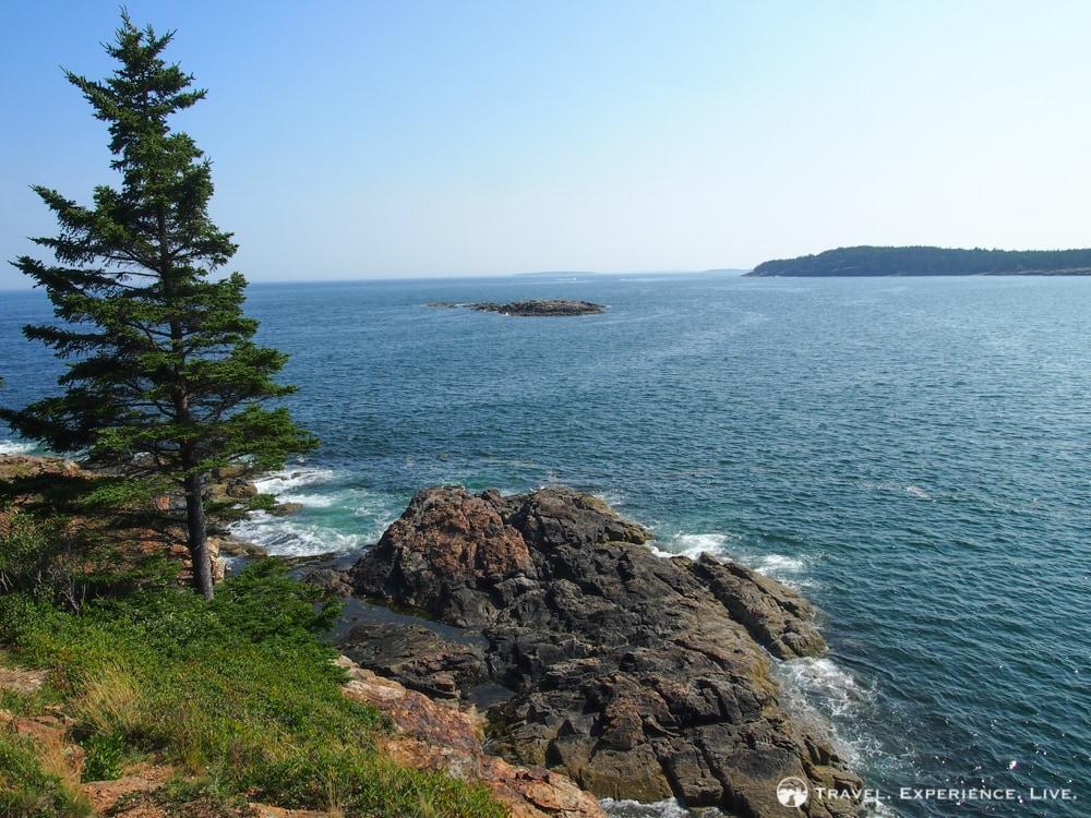 Rocky coast, Acadia NP, Maine