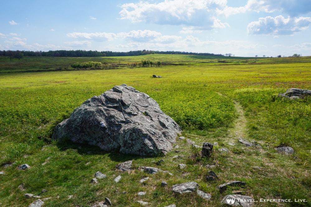 Big Meadows landscape, Shenandoah National Park