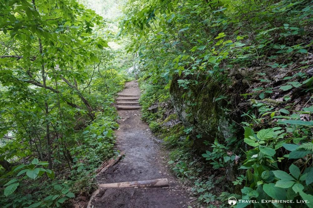 Trail at Crabtree Falls, Virginia