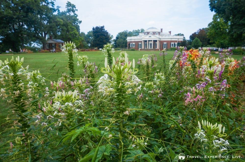 Flower garden at Monticello, Charlottesville