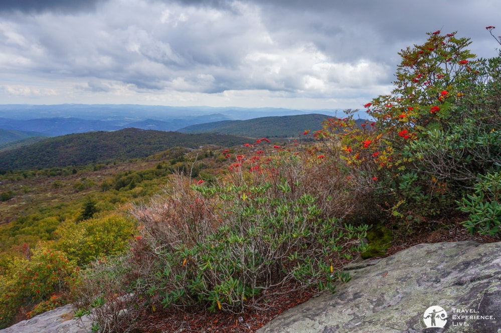 Early-fall colors, Grayson Highlands