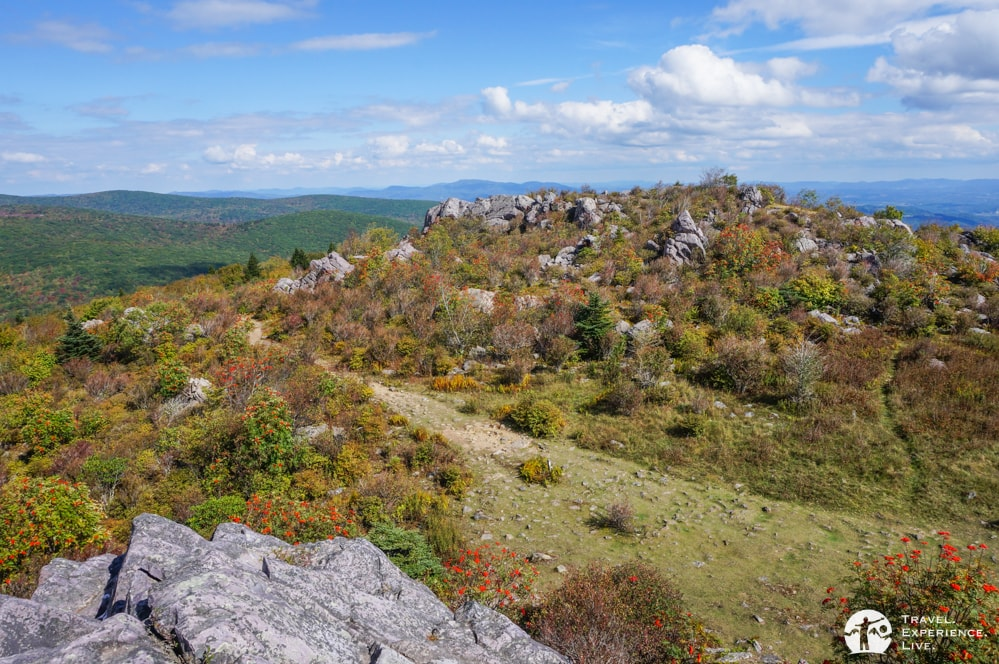 Perfect sky in Grayson Highlands State Park, Virginia