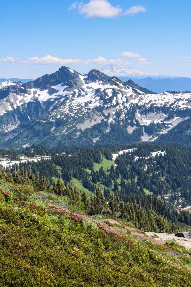 Cascade Mountains in Mount Rainier National Park