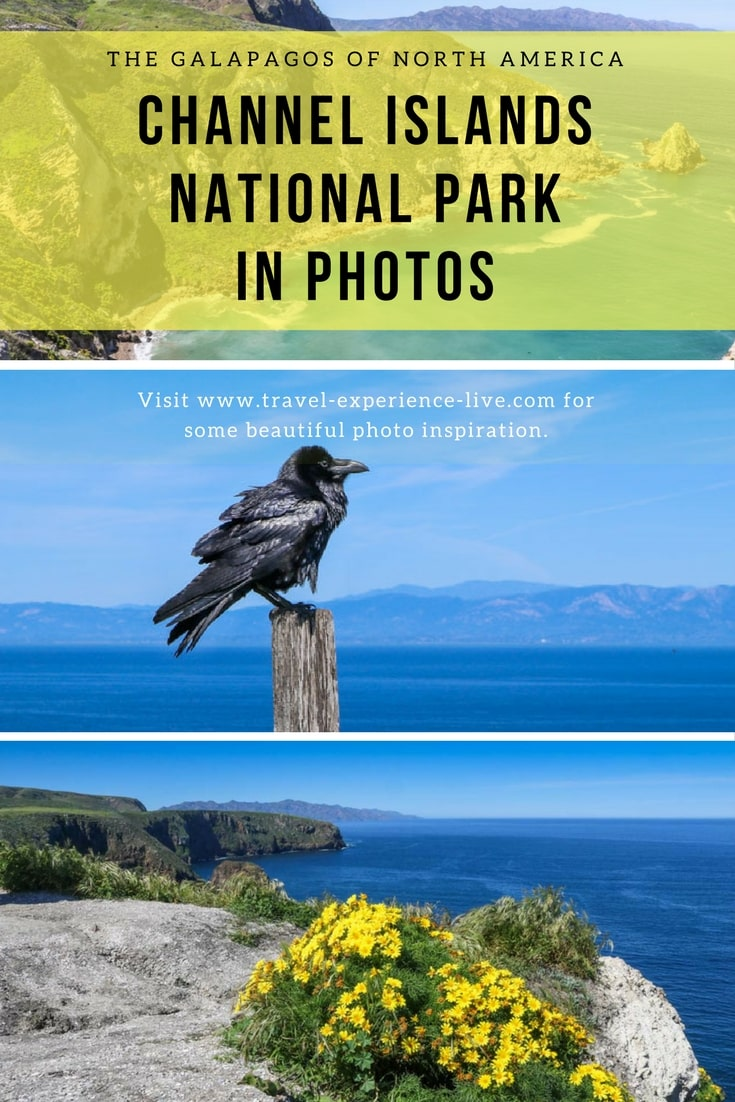 Channel Islands National Park Photos - California Channel Islands Photo Essay