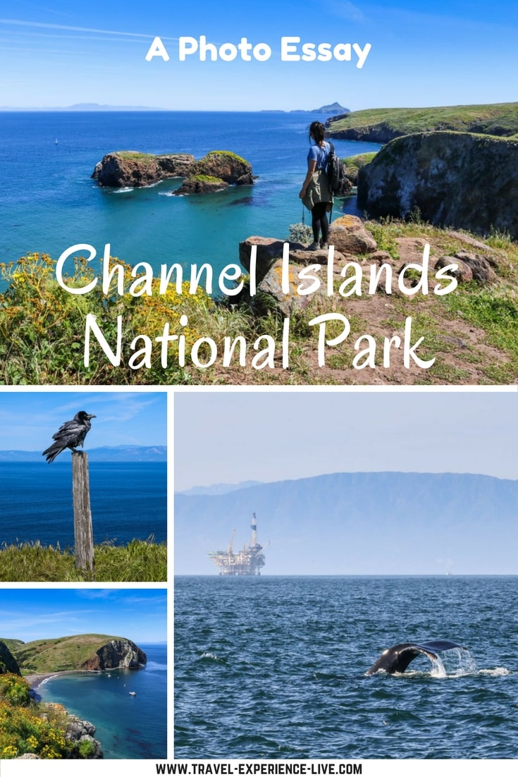 Channel Islands National Park Photos - Unique Archipelago in Southern California