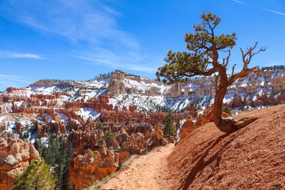 Peek-A-Boo Trail, Bryce Canyon National Park Hikes