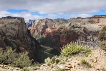 Zion Canyon, Observation Point Trail, Zion National Park