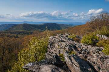 Frazier Discovery Trail - Best Day Hikes in Shenandoah National Park
