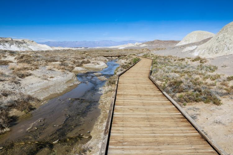 Salt Creek boardwalk, Death Valley National Park