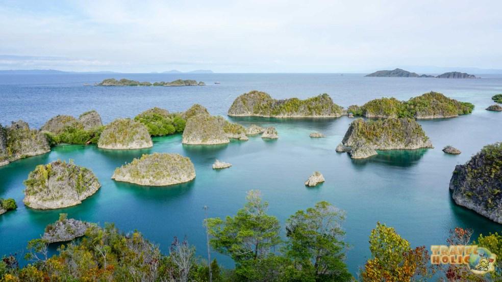 Penemu Island, Raja Ampat