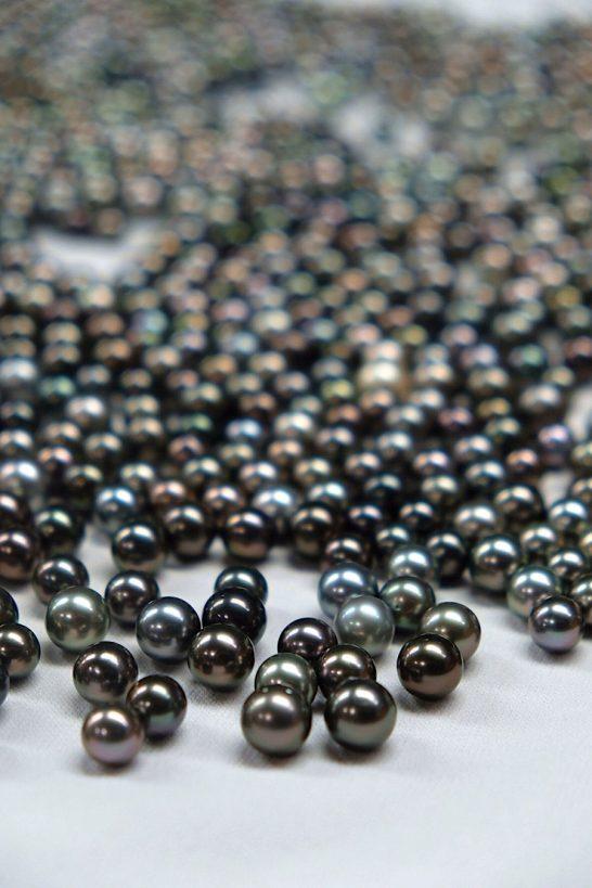 perles tahiti 2