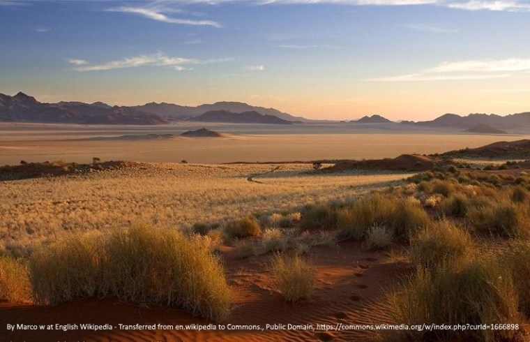 Namib Desert