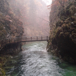 travel-sloveina-bled-gorge-view